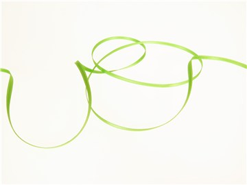 Double Face Satin Ribbon - Plain - 813 Spring Green - 3 mm