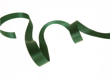 Ruban Satin double face - uni - 864 Dark Green - 16 mm