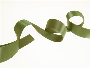 Double Face Satin Ribbon - Plain - 858 Mango Green - 25 mm