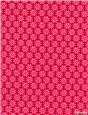 Pure Cotton Poplin - Daisy - Fuschia
