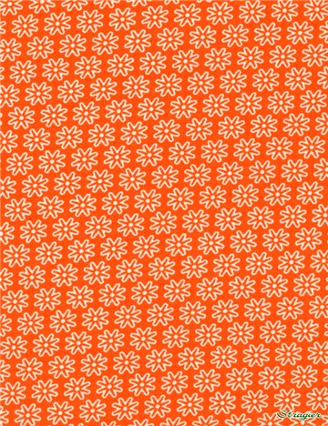 Popeline pur Coton - Daisy - Orange