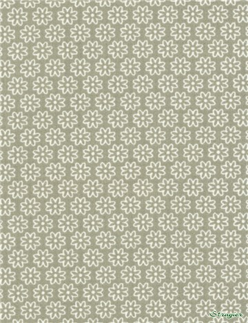 Popeline pur Coton - Daisy - Beige Taupe