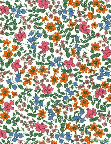 Liberty Tana Lawn - Emilia's Bloom - C